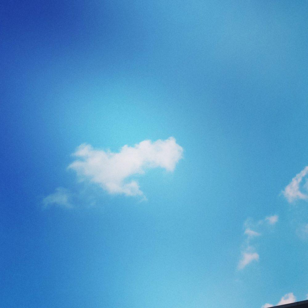 Rheinhessen ist schön, nicht nur mit blauem Himmel