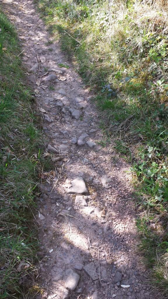 Ein kleiner, aber gut begehbarer Weg schlängelt sich nach oben