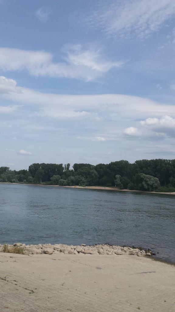 Wunderschöner Blick auf den Rhein