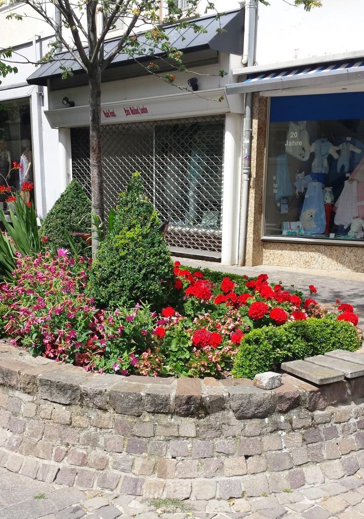 Blumenpracht in der Fußgängerzone