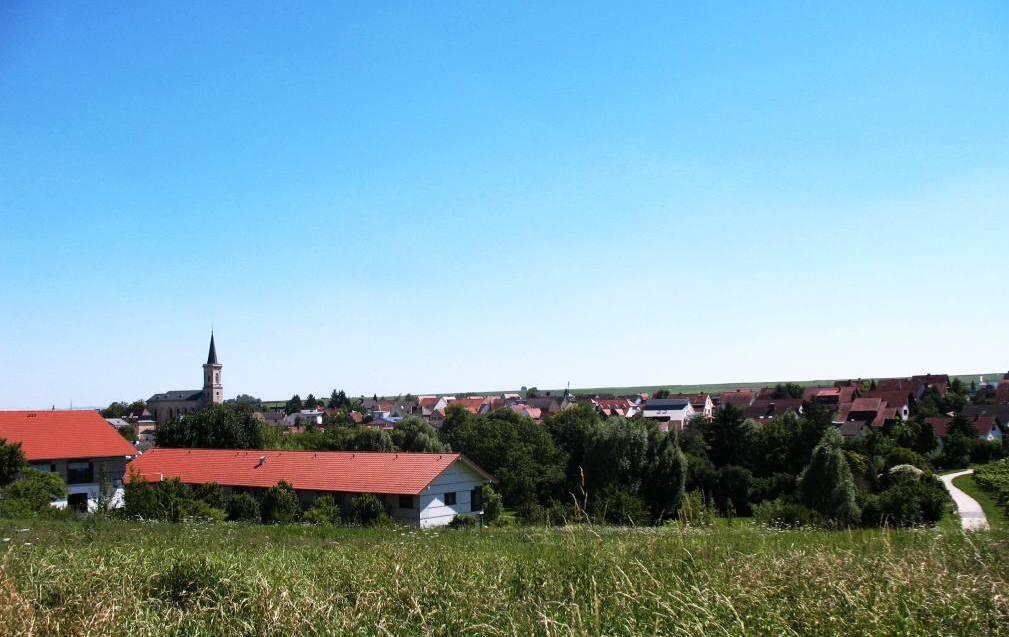 Wunderschönes Bodenheim, Teil 1