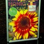 Geschleudert, meist gerührt – Honig aus Ingelheim