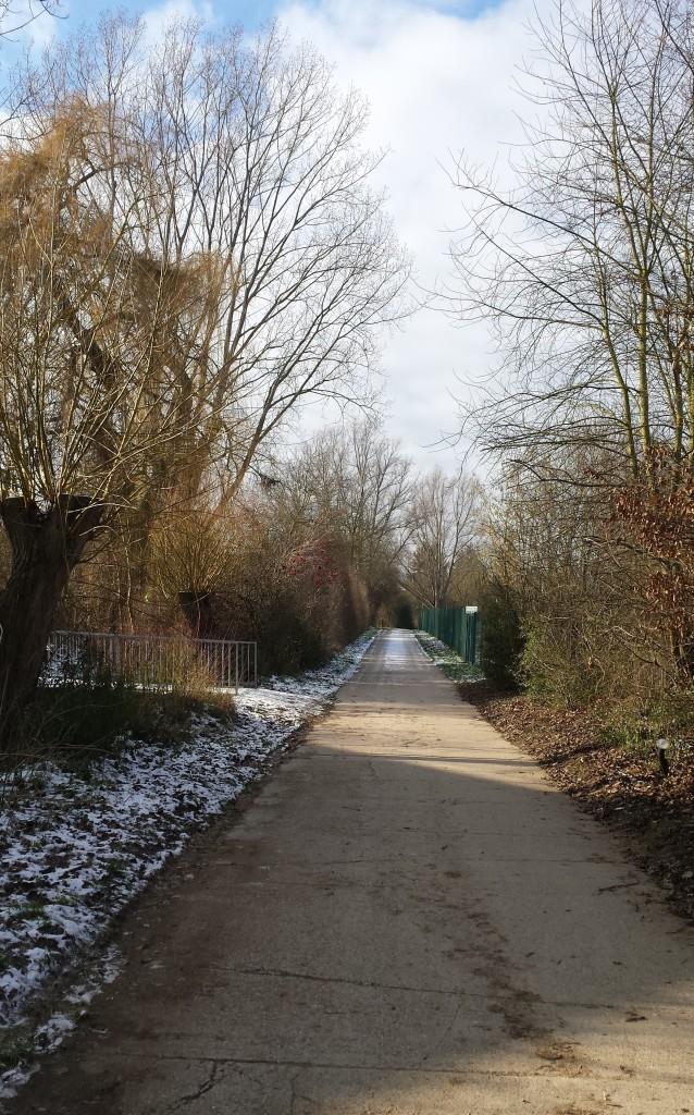 Jugenheim Weg