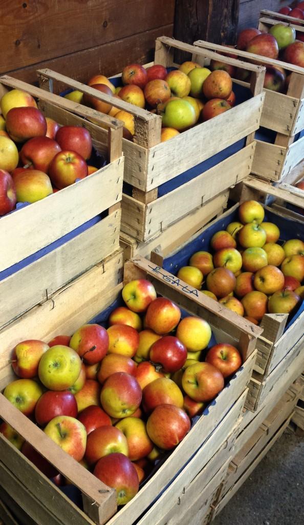 Obst Hemmes