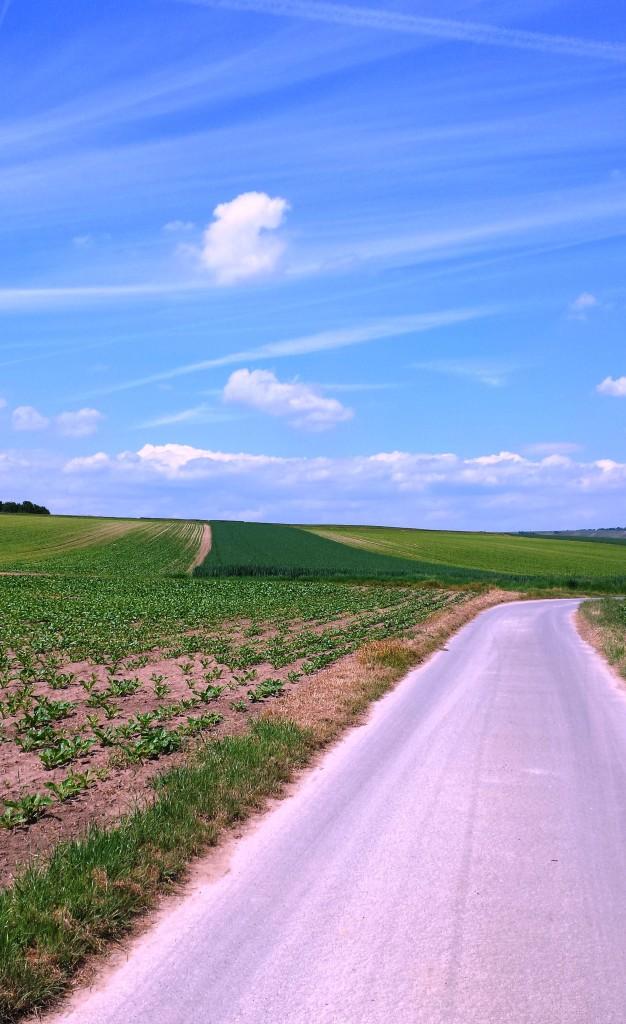 Prima: Der Weg geht leicht bergab, so können wir uns ein wenig rollen lassen