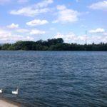 Mainz – für dich neu entdeckt