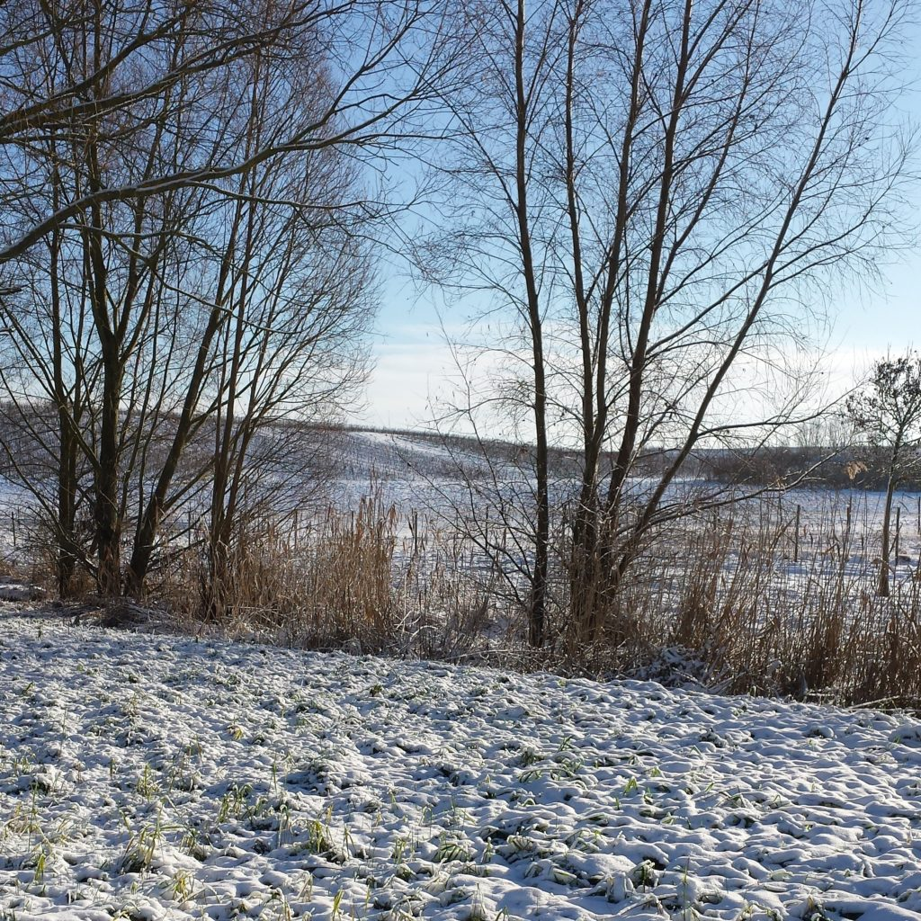 Rheinhessen Schnee Weihnachten Dezember