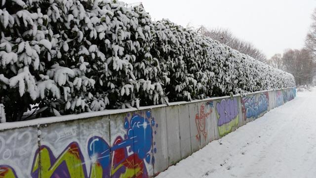 Schnee Winter Rheinhessen