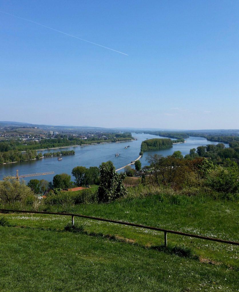Rochusberg Rhein