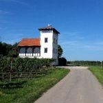 Großes Wandervergnügen: Hiwweltour Stadecker Warte