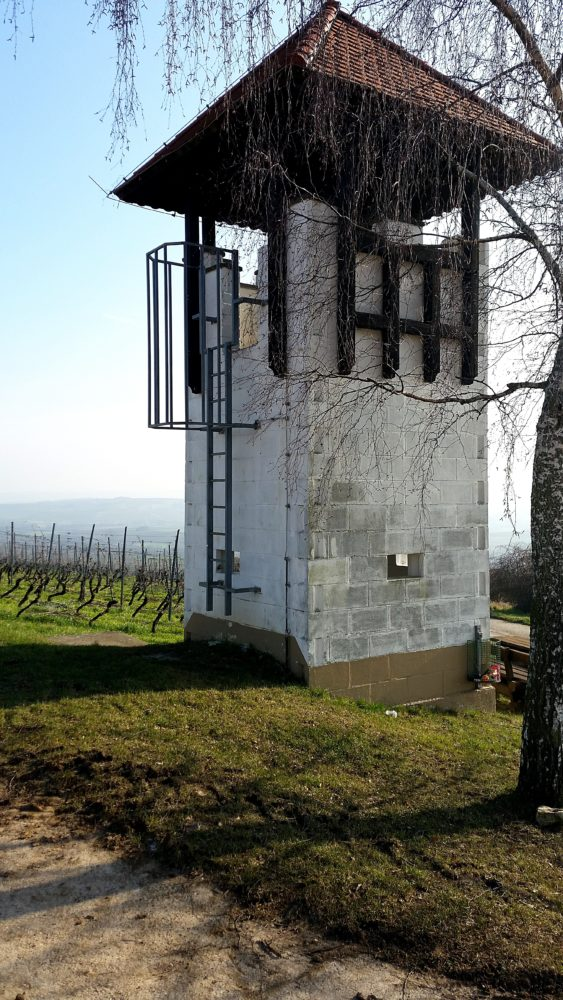 Weißer Turm Jugenheim