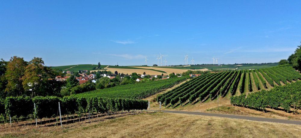 Alzeyer Land und Rheinhessische Schweiz