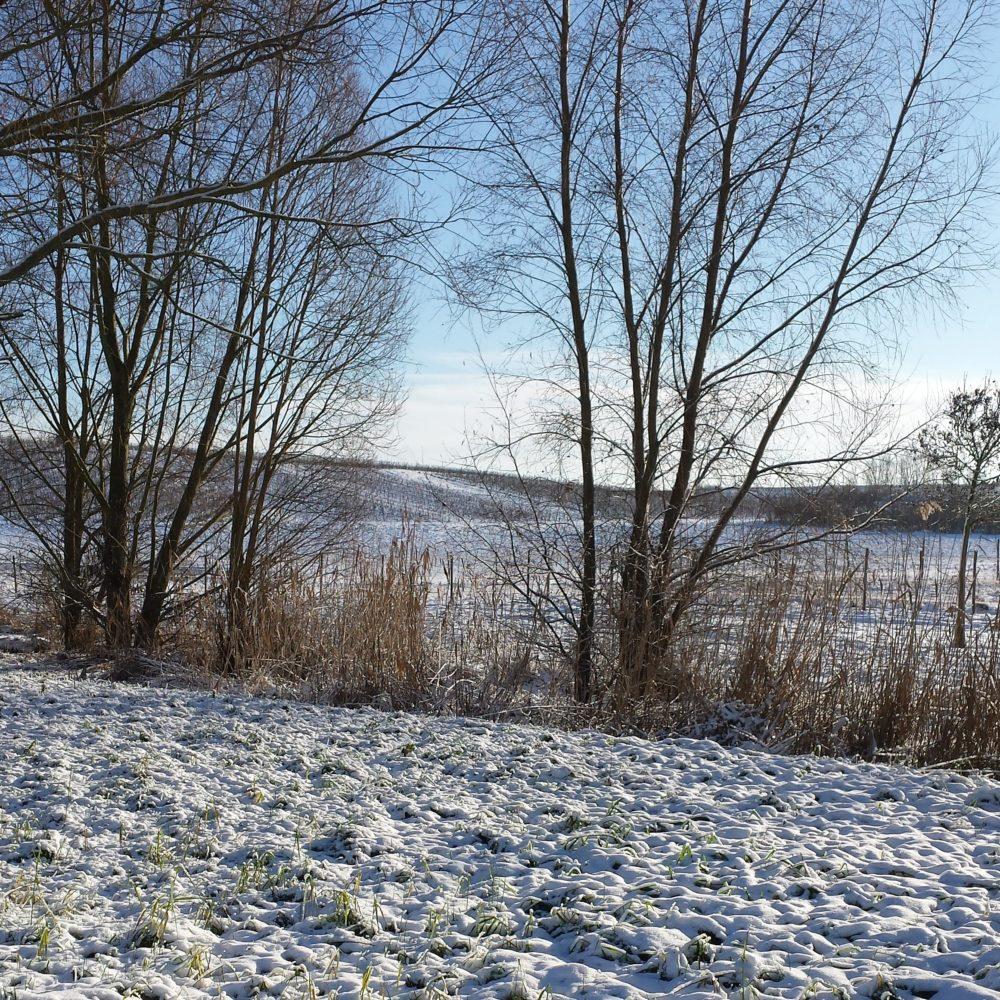 Winter in Rheinhessen Schnee