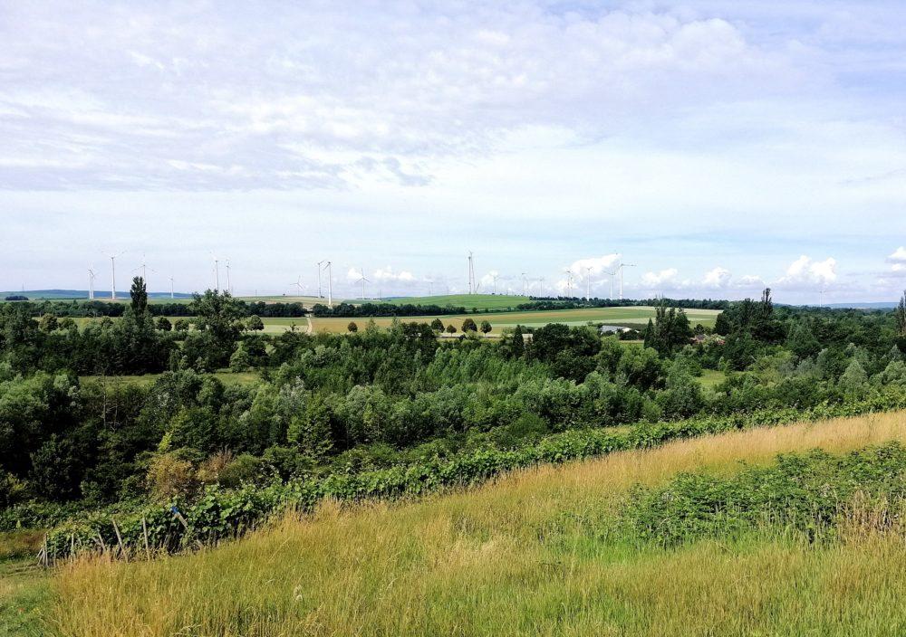Rheinhessisches Hügelland