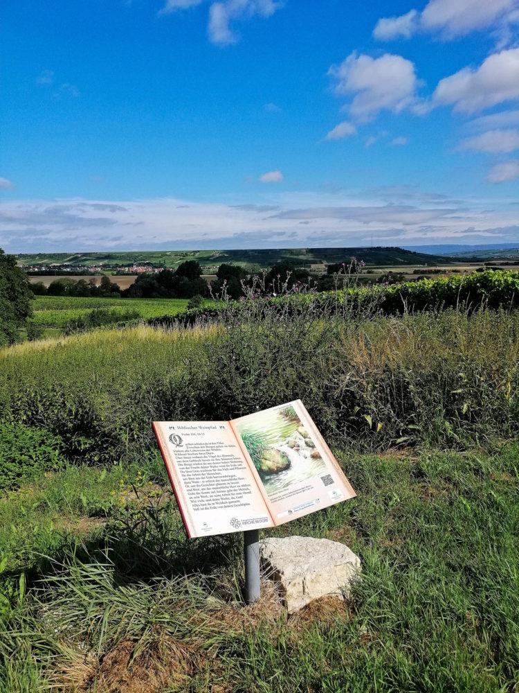 Schild auf dem biblischen Weinpfad Partenheim