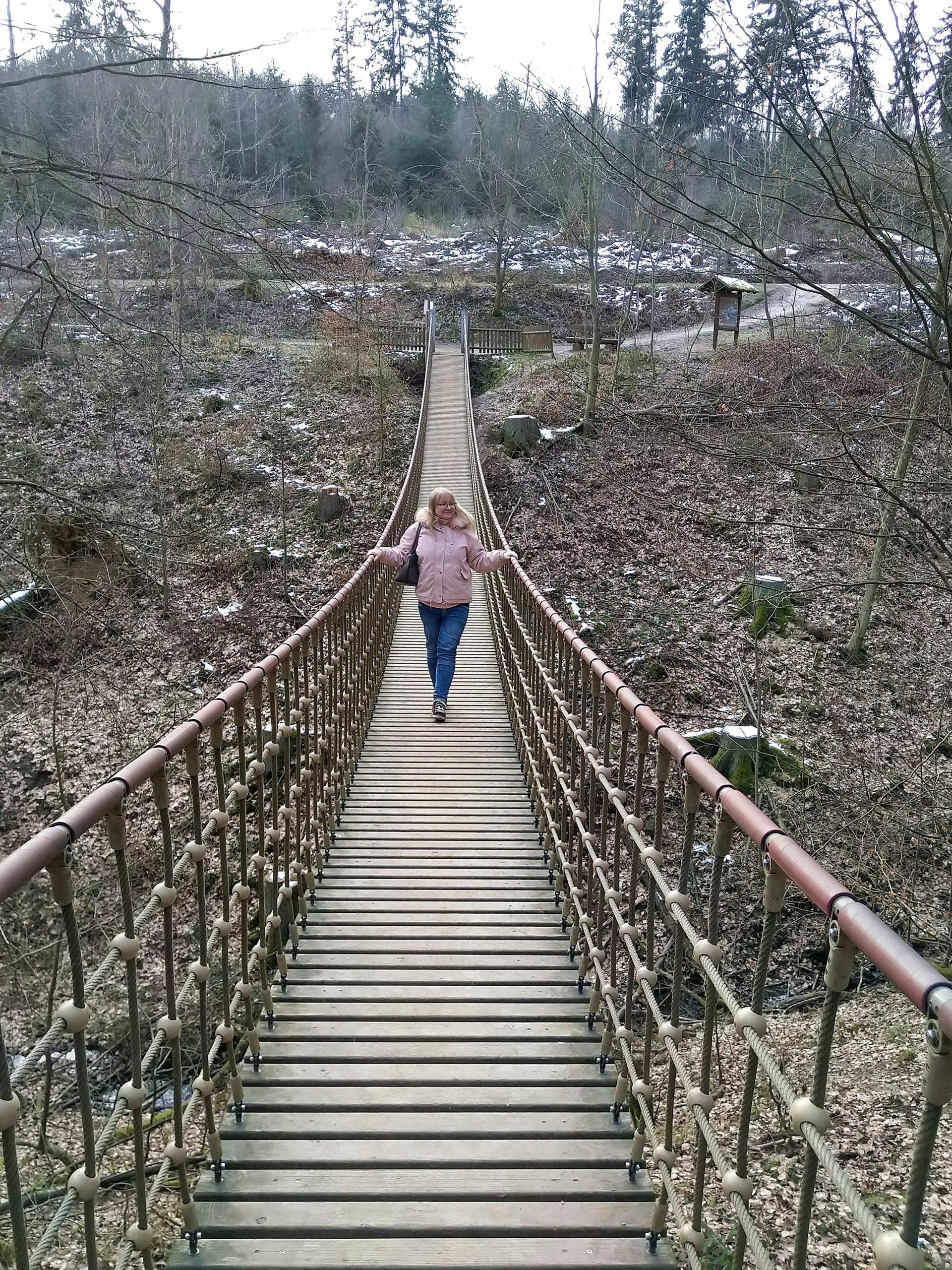 Erlebnispfad Binger Wald Hängebrücke