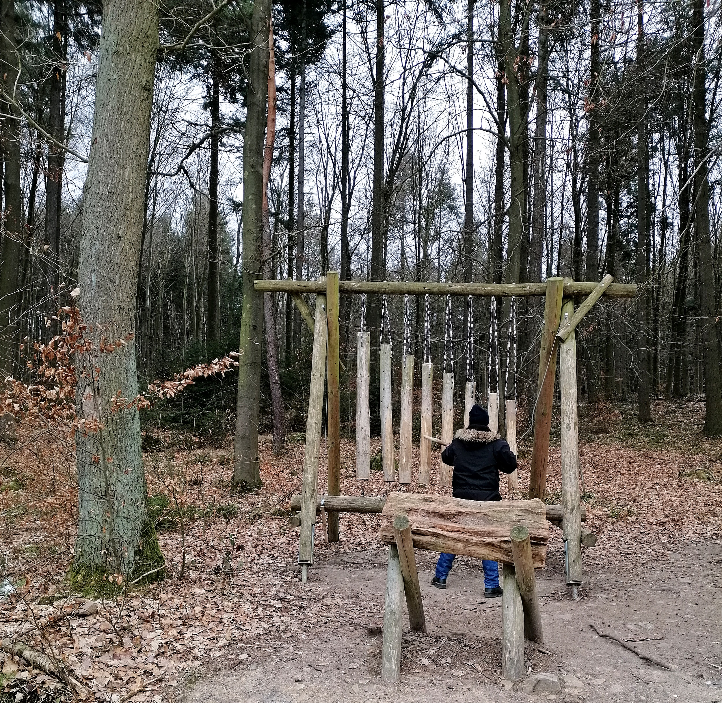 Erlebnispfad Binger Wald