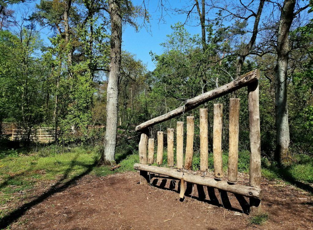 Walderlebnispfad Lennebergwald - ein Glücksort für Groß und Klein